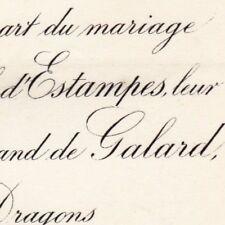 Elisabeth Ambroisine D'Estampes 1883 Joseph Bertrand De Galard De L'Isle-Bozon