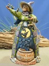"Jim Shore ""Blackbird Stew"" Halloween Witch w Black Birds 118104 Brand New n Box"