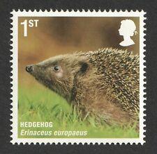 2010 1st Hedgehog. Mammals. Action For Species UM. SG 3063