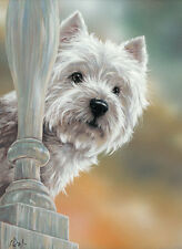 WEST HIGHLAND WHITE TERRIER fine art ltd edition dog print by Paul Doyle. Westie