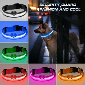 LED Dog Collar USB Rechargeable Glowing Flashing Night Light Waterproof Collars