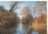 Hampshire Postcard - River Itchen - Alresford - Ref  9621A