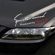 "14 X4.5""Sports Mind Silver Car Headlight Taillight Eyebrow Decal Sticker Vinyl L"