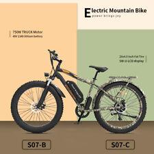 GLW Electric Bike Bicycle 750W 48V 13ah Li Battery 26*4in Fat Tire Rear Rack S07