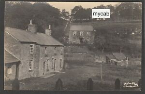 Postcard Parkend nr Lydney in Forest of Dean village cottages early RP by Morton