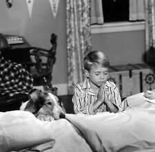 JON PROVOST UNSIGNED PHOTO - 5810 - LASSIE