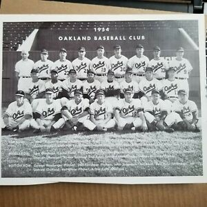 1954 Oakland Oaks Baseball Team Pic Black & White 8 X 10 Photo