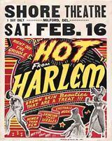 Vintage looking Hot Harlem 1960's burlesque event  POSTER  Milford DE  Delaware