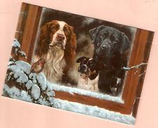 English Springer Jack Russel Labrador Retriever 5 Christmas Card John Trickett