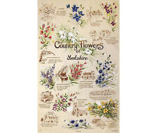 Stow Green Country Flowers Yorkshire Cotton Tea Towel Kitchen Baking 74 x 46cm