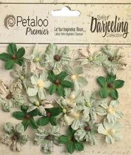 Mini Blossom SOFT GREEN 24 Teastained Paper 2cm across Darjeeling Petaloo Ver