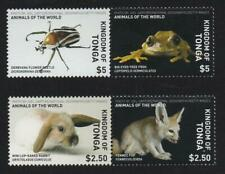 Tonga (2019) Animals of the World - Beetle, Frog, Rabbit, Fox