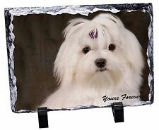 Maltese Dog 'Yours Forever' Photo Slate Christmas Gift Ornament, AD-M1ySL