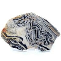 Zebra Quartz (Banded and Folded Quartz and Basalt), Polished, 145 mm - Australia
