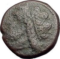 SYRACUSE SICILY King Hieron II 240BC Ancient  Greek Coin POSEIDON DOLPHIN i62864