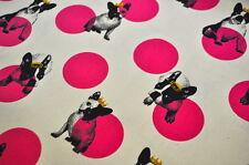 Echino Kokka japón bolso decorativas 0,5m lino perro French Bulldog Bully canvas P