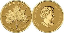 2012 Gold 'Maple Leaf Forever' 1/10oz $5 Pure Gold Coin .9999 Fine