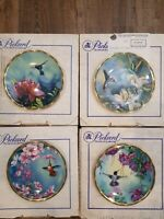 """Lot of (4) Pickard Hummingbird 6.5"""" Collectors Plates by Cyndi Nelson *Excellent"""
