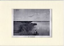 Antique matted print : water Prinsenhof Wartena Frisia 1928 Friesland