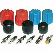 A/C System Valve Core and Cap Kit  MT2903
