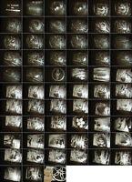 16 mm 2 Filme RWU 1930 Jahre-Tierkunde:Kuckuck Ei-Drosselsänger-Antique film
