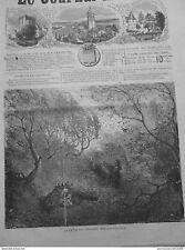 1866 JI11 NATURE CHUTE FOGLIE ANNUNCIO INVERNO PRELEVA LEGNO ONERE DISEGNO G.