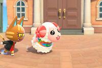 Bewohner Dominik - Dom Villager Animal Crossing New Horizons