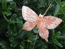 Pastel Orange Feather Butterfly - 5.0cm - Set of 2