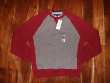 Tommy Hilfiger L Regular Size Sweaters for Men