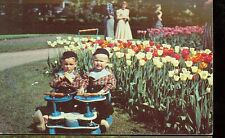 HOLLAND,MICHIGAN-TULIP TIME-TWINS IN TWIN VINTAGE STROLLER-(1952)(MICH-H*)