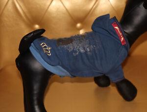 7442_Angeldog_Hundekleidung_Hundesweatshirt_Pulli_Hund_Chihuahua_RL25_XS kurz