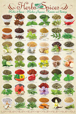 THE HERBS AND SPICES Cooking POSTER for Kitchens, Restaurants, Schools