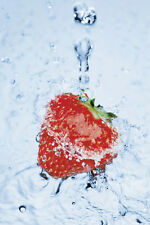 POSTER Strawberry on Ice