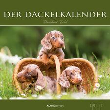 Tier Kalender 2017  Der Dackelkalender / Hunde / Welpen 33x33 cm