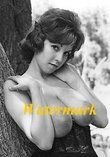 Juli Williams 1950-60's Classic, Retro, Vintage, Timeless Pinup Model-Photo A-07