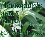 Houseplants And More