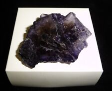 Dino: Purple Fluorite Cube Specimen, Mexico - 46 g - Natural Display