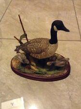 Border Fine Arts Canada Goose & Goslings