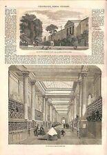 Galerie de Minéralogie Jardin des Plantes Paris Agate Onyx Quartz GRAVURE 1856