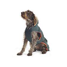 Vêtements et chaussures verts Ancol pour chien