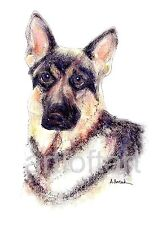 GERMAN SHEPHERD #1  DOG  ACEO Card Print by A Borcuk