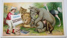 RARE CHROMO CACAO SUCHARD VELMA MILKA Série n° 134 ANIMAUX de CIRQUE n° 3 1904