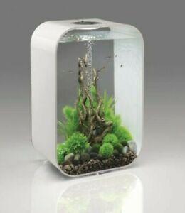 Designer Boirb White 60L Fish Tank for Sale
