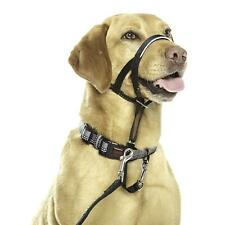 Halti Headcollar Obedience Training Comfortable Stops Pulling Halter for Dog Pup