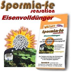 Eisenvolldünger für Aquarien Wasserpflanzendünger Spormia-fe sensation 50