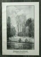 LPZ) Kunst Blatt Leipzig Leipziger Landschaft 1913 K Schiering Künstler 24x34cm