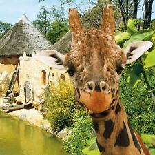 Kurzurlaub Familie inkl. Zoo Hannover 3 Tage im 4★ Mercure Hotel 2 Kinder frei