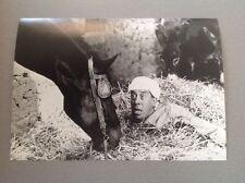"""FERNANDEL dans """" ALI BABA ET LES 40 VOLEURS """"  - PHOTO DE PRESSE 14x20cm"""
