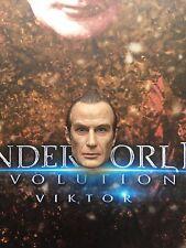 """Star Ace inframundo evolución Viktor 12"""" cabeza esculpida Suelto Escala 1/6th"""