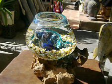 Glass Fish Bowl on Driftwood Stand from Bali - Unique shape to fit stand